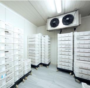 Kauai Air Conditioning Repair Kauai Ac System Service